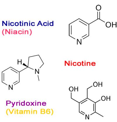 Obratite pažnju na molekuku nikotina i nikotinsku kiselinu koja je nama poznata pod imenom nijacin ili vitamin B3.