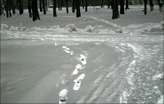 Crni snijeg Omska.
