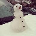 snješko, južna Florida