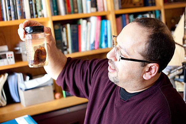 Profesor biologije i bokemije Harvardu je zaljubljenik u oceane, ali je njegov nedavni rad napravio pomak u našem poimanju metabolizma bakterija.