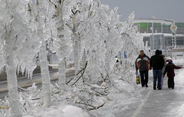 Ledom okovana Postojna 03.02.2014.