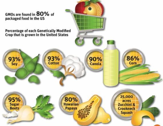 SAD je najveći proizvođač margarina, obratite pažnju na omjere genetski modificiranih zasada i vrste biljaka koje služe za osnovu stvaranja margarina.