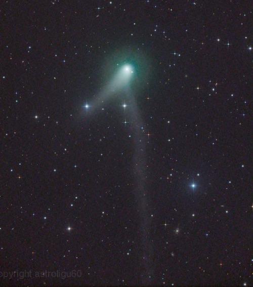 """Na slici vidite komet Panstarrs-K1 s dva repa, donji vijugavi rep je nastao nakon što je kometa stvorila """"kratki spoj"""" u interakciji s pozitivno nabijenim ionima iz solarnih vjetrova, taj efekt se naziva pražnjenje solarnog kondenzatora."""