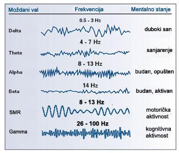 Obratite pažnju na frekvencije moždanih valova ljudskog bića i na frekvenciju Schumanove konstante.