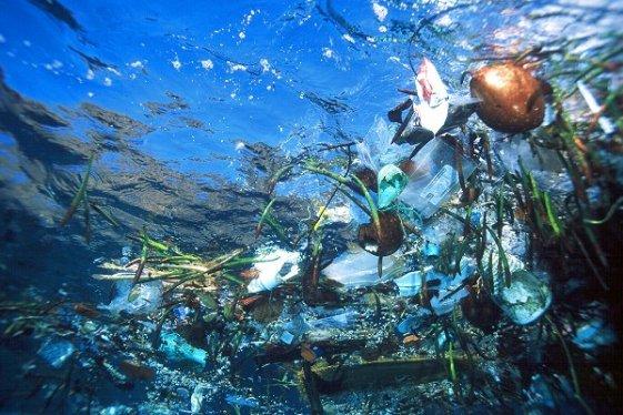 Naši oceani su postali odlagališta smeća, na tim odlagalištima najviše je plastike.