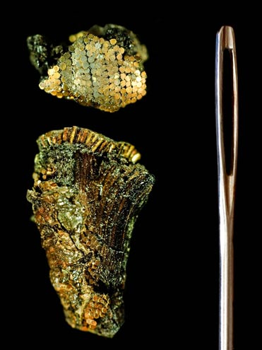 Mikro zlato iz Bush Barrowa je debljine 0,2 milimetra i duljine nepunih pola centimetra.