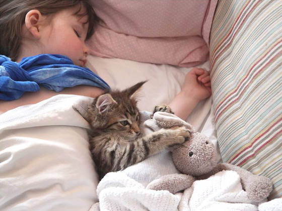 """Mačka Thula se ne odvaja od svoje """"gospodarice"""" Iris."""