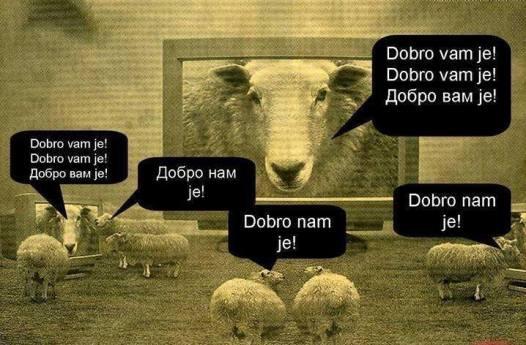 Onima koji nisu upoznati s patokracijom, uloga ljudi ovaca (sheeple) će se činiti kako obična tlapnja. Orwell je bio siguran u našu sudbinu začaranih i uspavanih jedinki koje prate svoje ljubljene vođe.