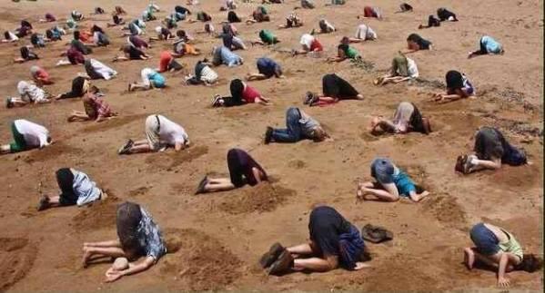 Orwell je veliku većinu ljudstva uspoređivao s nojevima koji zabijaju glavu u pijesak.