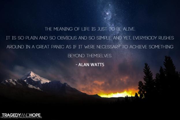 Smisao života je da jednostavno budemo živi.  Svi jure u panici da kao da je  nužno da postignu nešto veće od njih samih. Alan Watts