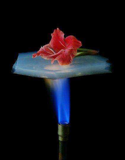 Odlična izolacijska svojstva aeroglea se mogu vidjeti na temperaturi od 600 stupnjeva Celzijeve ljestvice.