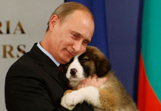 Iako se Putina stalno prikazuje kao bešćutnog diktatora koji želi svijet uvući u novi globalni sukob, vrijeme je da otkrijemo koliko je od toga neistina.