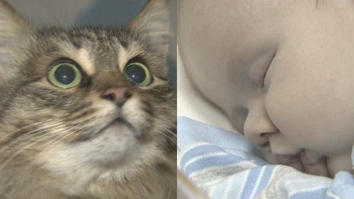 1 mačka i beba