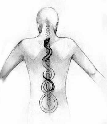 Učitelji kundalini joge smatraju da je energija sklupčana i leži u podnožju kralježnice. Cilj je probuditi tu energiju i potaknuti naš puni potencijal.