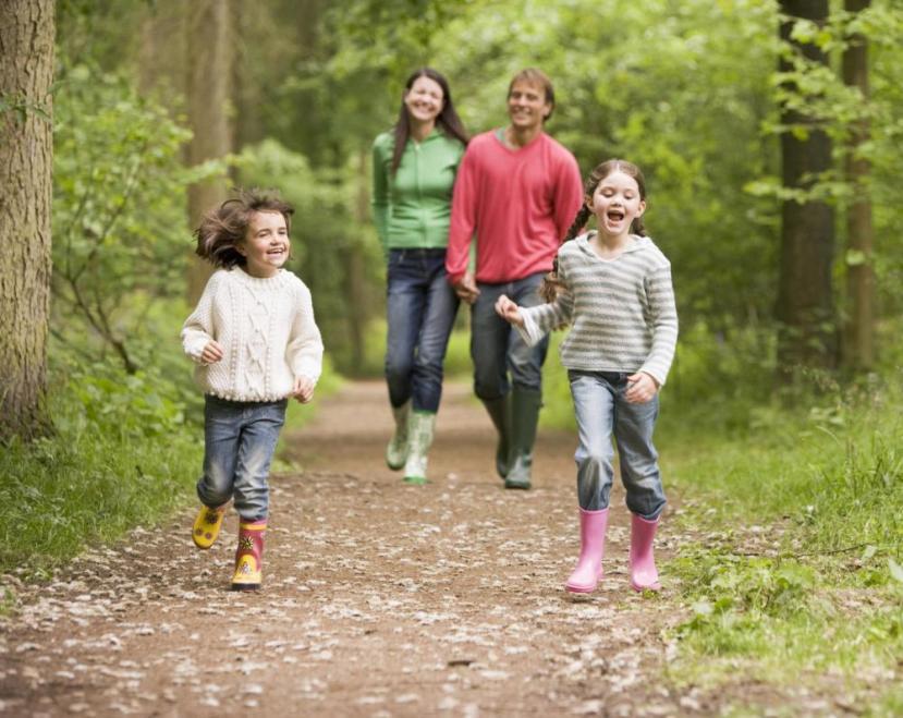 Osim poboljšanja psihofizičkog zdravlja, šetnja prirodnom omogućava i povećanje naše kreativnosti.