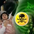 1 fukushima