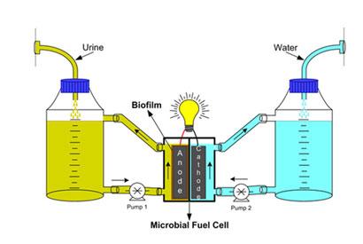 Način djelovanja mikrobioloških električnih ćelija za proizvodnju električne energije.