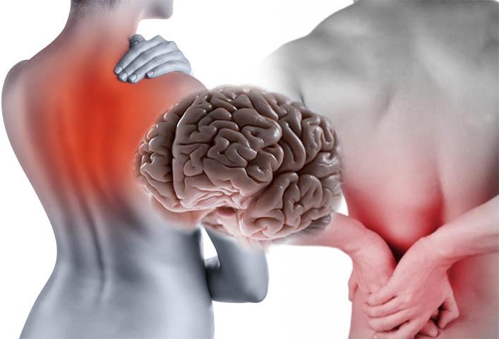 Otkriveni neurološki mehanizmi blokiranja bolova