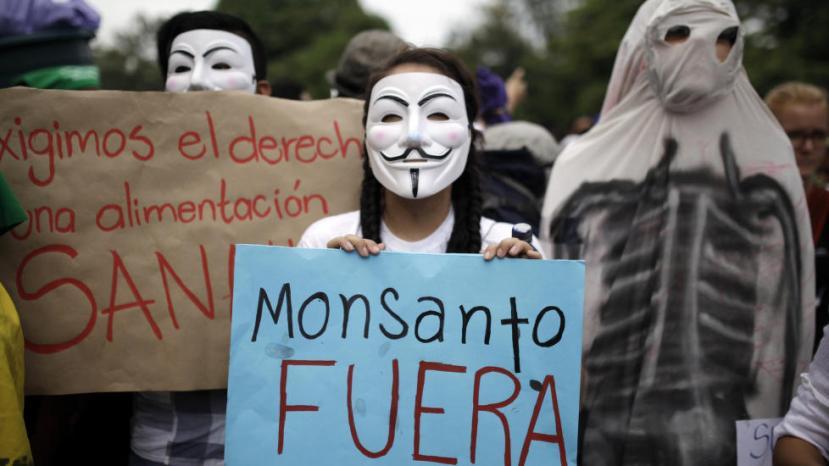 Građani malenog Salvadora su se digli na noge kako bi obranili svoje autohtone vrste sjemenja i kako bi pritisli političare da izbace Monsanto iz njihove zemlje.