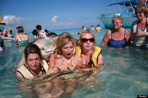 Ne baš oduševljene plivačice s nasmiješenim golubom u Stingray Cityju na Grand Caymanu ili Velikom Kajmanu.