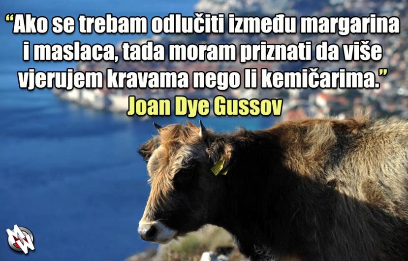 krave i maslac glavna