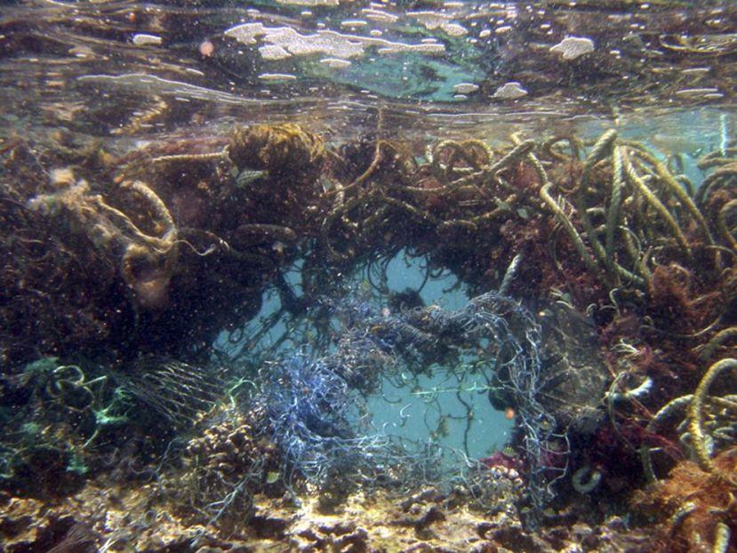 Tipične velike plove smeća se trenutačno skupljaju u četiri dijela: sjevernom dijelu Pacifika i Atlantika i južnom dijelu Pacifika i Atlantika.