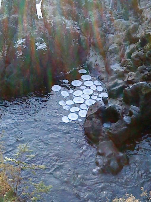 Ledene palačinke iz Luglowa u Walesu.