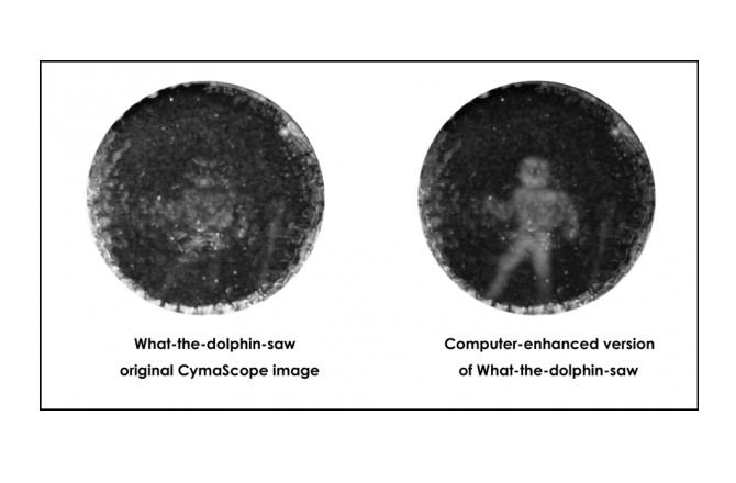 S lijeve strane vidite prvotne slike CymaScopea, na desnoj strani je kompjuterski pročišćena slika čovjeka, koja se dobila kopiranjem i repliciranjem frekvencija dupinskog biosonara.