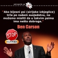 Bijesni psi, Carson