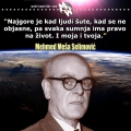 Šutnja, Selimović