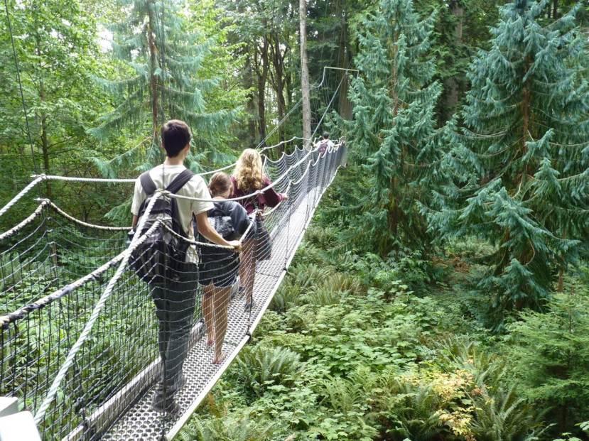 Osjetite kako Vam se opušta cijelo tijelo dok zamišljate šetnju ovakvim mostićem kroz šumu.