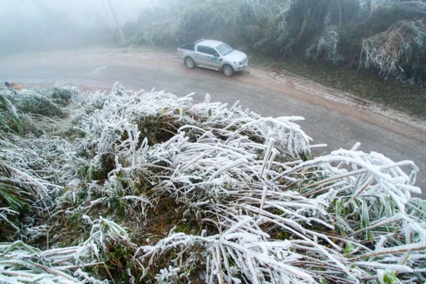 Snijeg u tropskom Laosu.