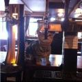 mačka alkoholičarka