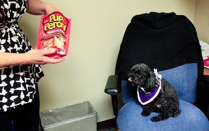 Susan Bucci daje Nali keksiće u znak zahvalnosti za jutarnju vizitu.