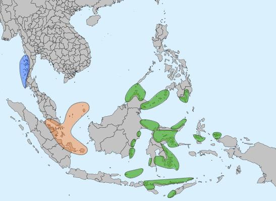 Narančasto -Orang Laut, Moken - Plavo, Sama-Bajau - Zeleno