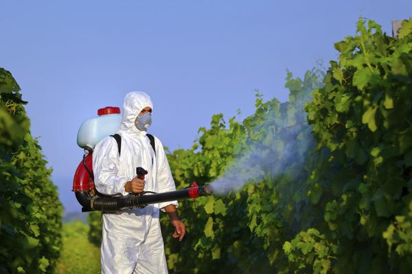 Moderni pesticidi su na našim prostorima ponajviše uzrokovali Hodgkinov i no Hodgkinov limfom.
