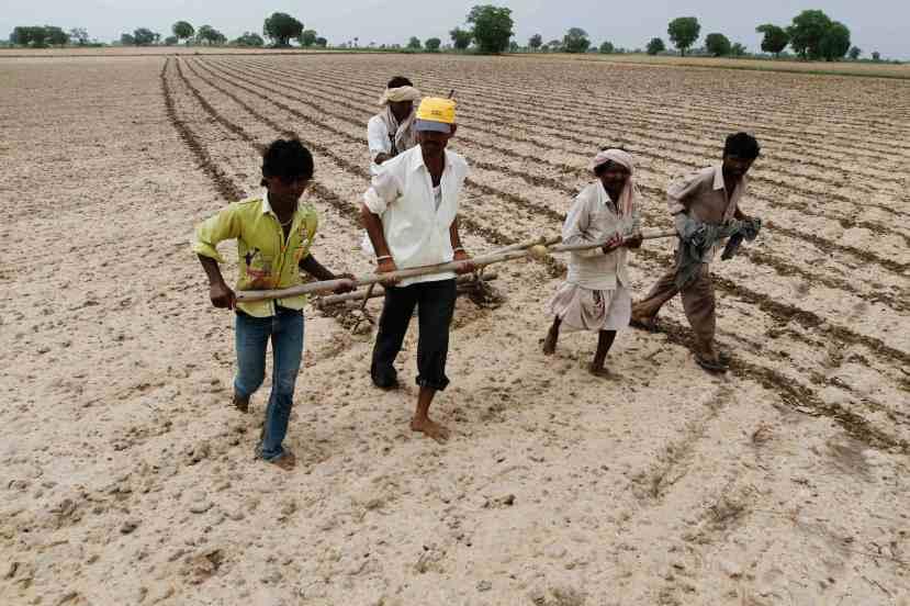 Seljaci iz Shahpura su toliko siromašni da nemaju niti stoku koja bi vukla plugove. Oni žive na rubu egzistencije iako su veganci i iako u prosjeku na poljima rade 12 sati.