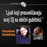 hawking gubitnici
