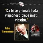 schopenhauer vrijednost