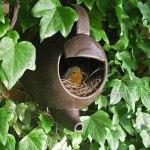 Idealno za gnijezdo usred zelenila