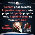 schopenhauer-talenat-i-genije