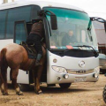 konj-u-busu