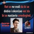 George Orwell rat