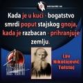 Lav Nikolajevič Tolstoj bogatstvo