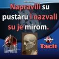 Tacit Mir