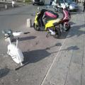 bicikl za sve potrebe