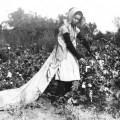 1915., beračica Callie Campbell je morala ubrati 50 kila pamuka na dan