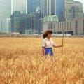 1982. Agnes Denes je uzgojila polje pšenice usred Manhattana