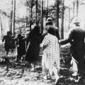 Nijemci vode na strijeljanje Poljakinje 1941.