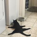 mrtav umoran za ručkom